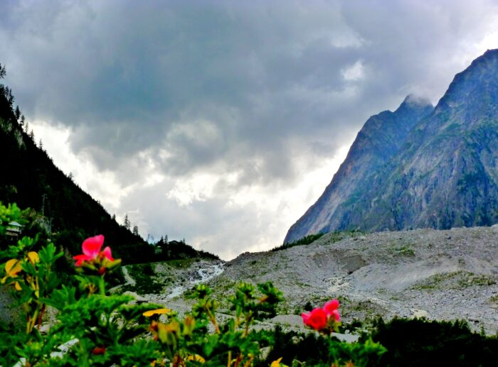 A photo showing some red flowers in the foreground, and two mountains raised in the background.
